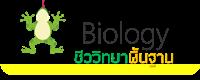 https://sites.google.com/a/srk.ac.th/biologysrk/basic-biology